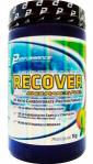 Recover Endurance Fuel Limão 1Kg - Performance