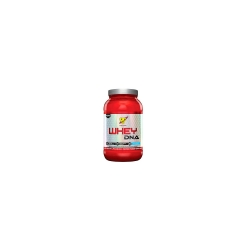 Whey DNA (25 doses) - BSN